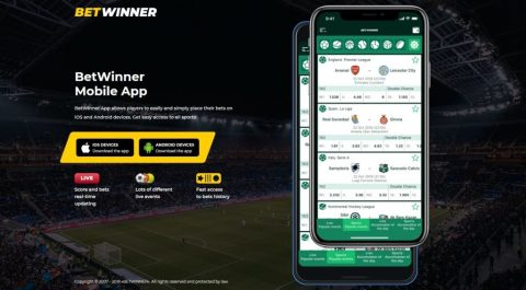 BetWinner possui app?